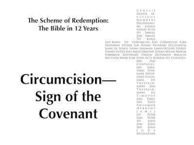 The Scheme of Redemption #4 Featured Image
