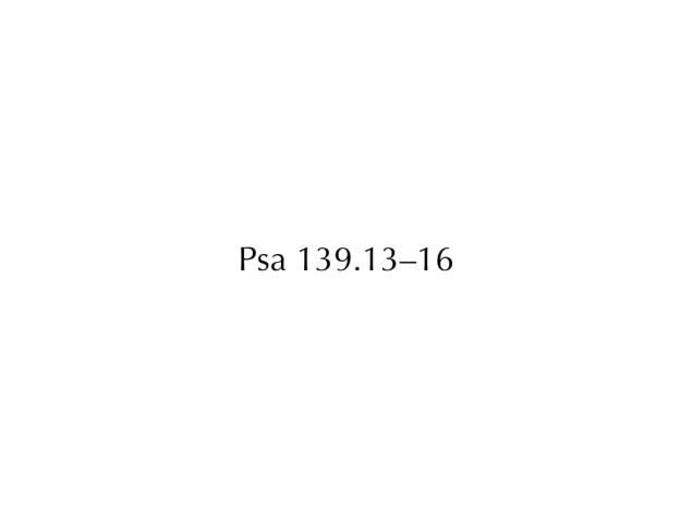 03811,Presentation Images.031