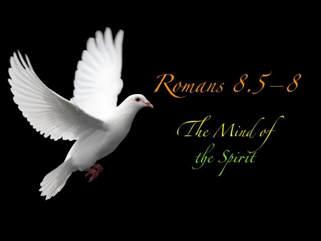 Romans 8 Images.006
