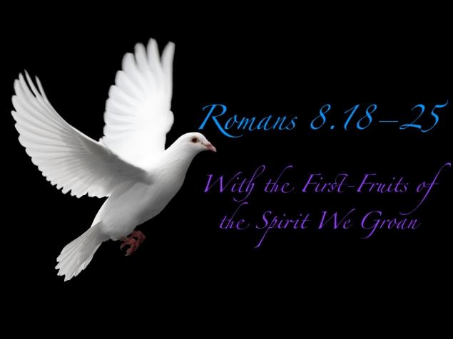 Romans 8 Images.018