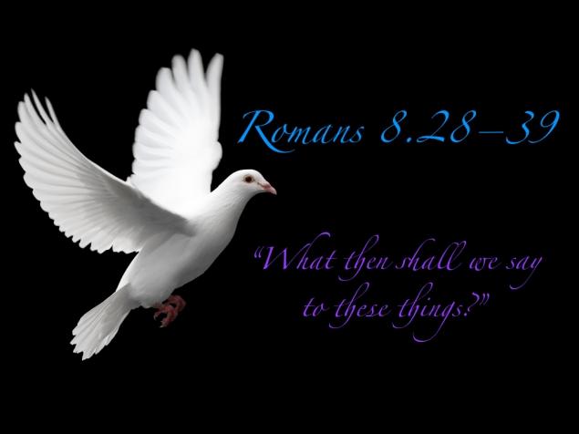 Romans 8 Images.024