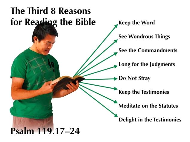 third-8-reasons-image-001