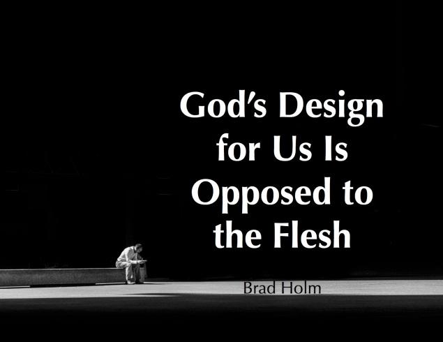 Gods Design BradHolm Images