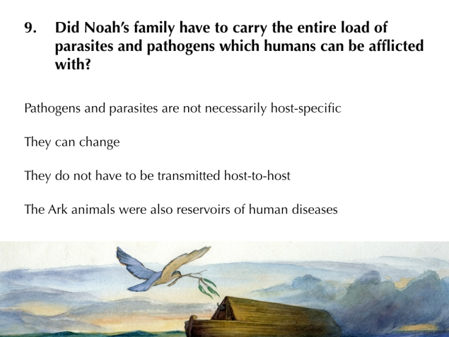 NoahsArkPart5 Images.016