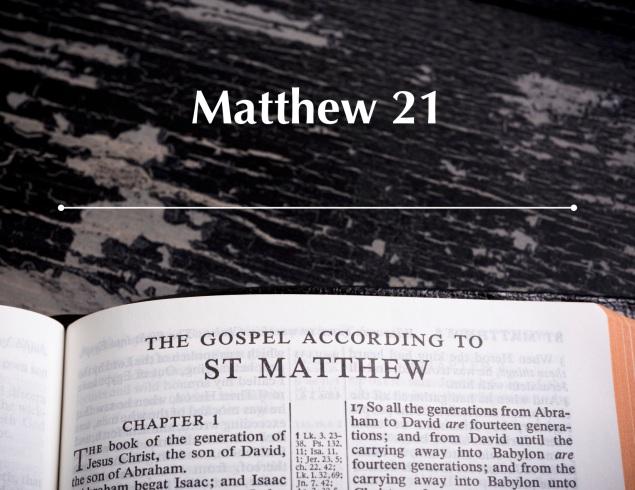 Matthew 21 Images