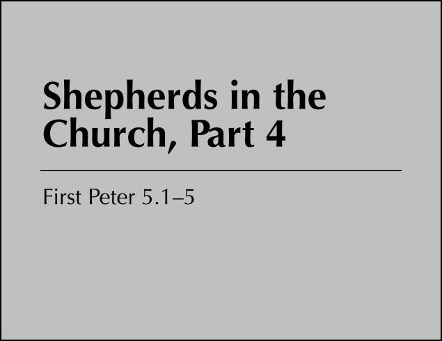 Shepherds 4 Image