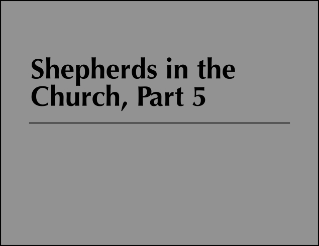 Shepherds 5 Image